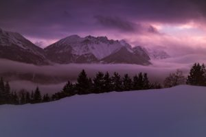 Winter Scene in Austria