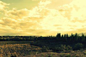 landscape-60879_1920